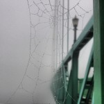Dewy spider web on the St. Johns Bridge disappearing into the fog - Portland, Oregon